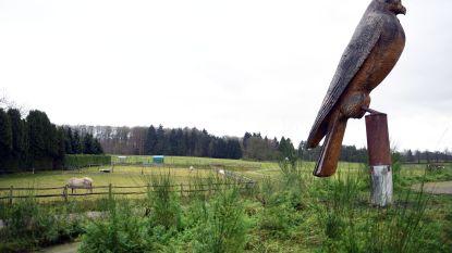 Uitkijktoren aan onthaalpoort Torenvalk pas voor lente van 2019