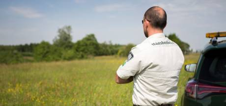 Roep om wapens voor opzichter, problemen in bos nemen toe