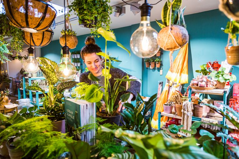 De Javastraat zit vol leuke plekjes, zoals plantenwinkel Balkonie. Maar vooral de 'oude' ondernemers worden aangedaan tijdens de tour. Beeld Tammy van Nerum