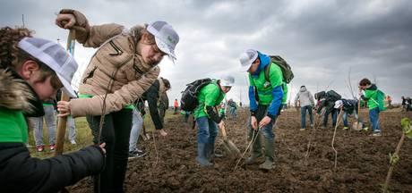 Den Bosch krijgt acht boomplantdagen