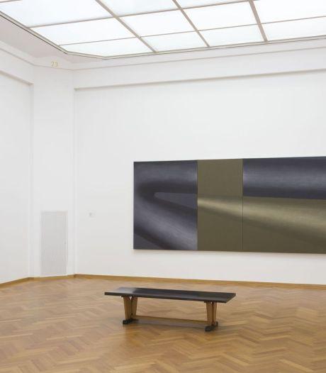 Gemeentemuseum koopt groot schilderij Lee Lozano
