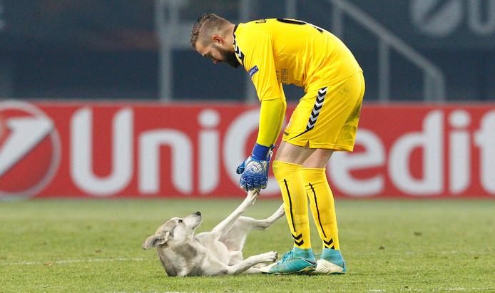 Vardar-keeper Filip Gacevski probeert de hond uit het veld te krijgen.