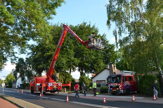 De brandweer in Haalderen was druk bezig met het weghalen van een tak bij een woning.
