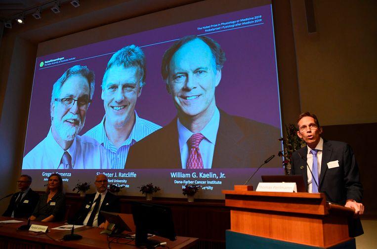 Op het diascherm de drie winnaars van de Nobelprijs voor Geneeskunde.  Beeld AFP