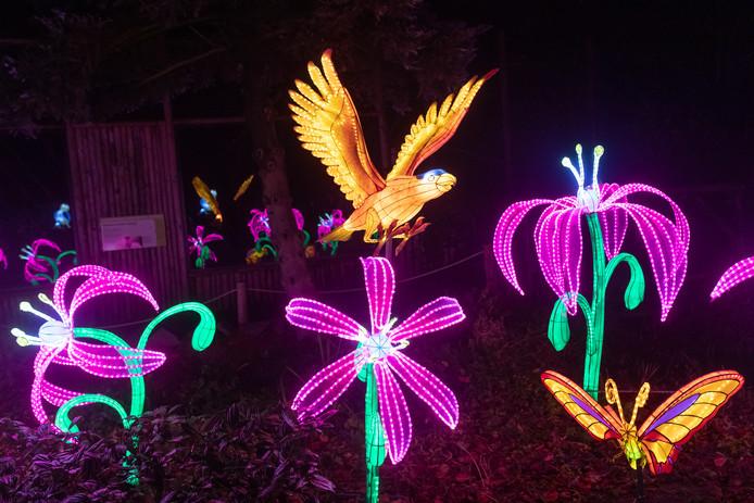 De lichtshow in Ouwehands laat vele bloemen en vogels zien.