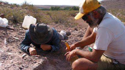 Nieuwe dinosaurussoort ontdekt in Argentinië