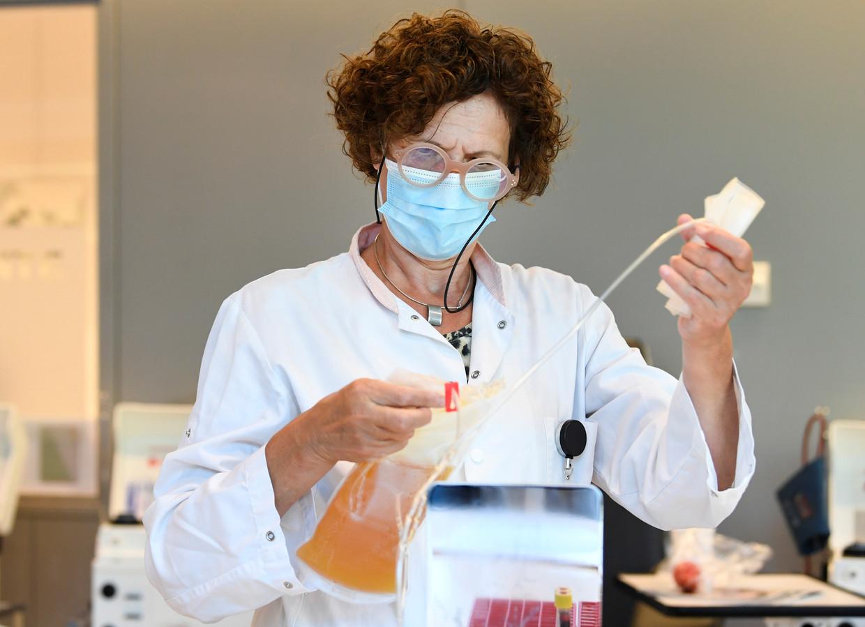 Test van plasma door een onderzoeker van Sanquin. Beeld Reuters