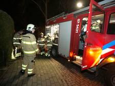 Coniferenhaag in Giesbeek vliegt in brand