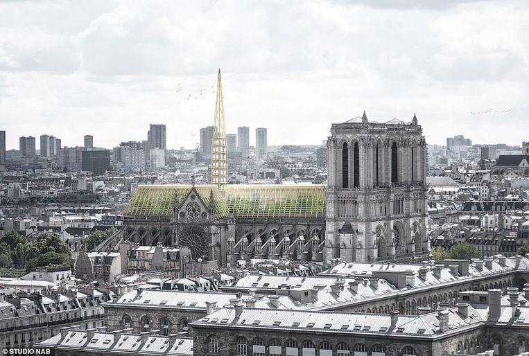 In het voorstel van Studio NAB is het dak van de kathedraal getransformeerd in een broeikas. Beeld null