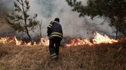Brandweer trotseert nog steeds bosbranden Tsjernobyl, dag op dag 34 jaar na kernramp