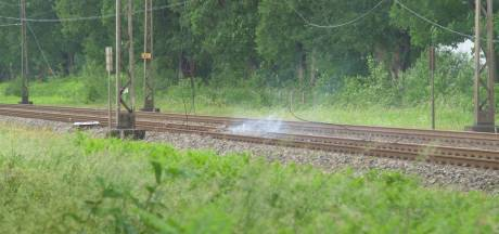Brandend ooievaarsnest legt treinverkeer tussen Amersfoort en Deventer plat