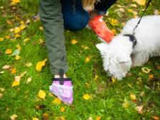 Zelf je hondenpoep opruimen in Geertruidenberg
