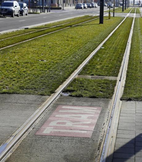 Groen verzamelt 3.448 handtekeningen tegen afschaffing rechtstreekse trams van Borgerhout en Deurne naar centrum