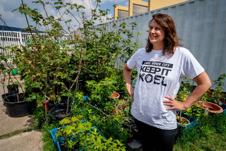 Cool Down City van Charlotte van der Heiden organiseert gratis bomen, om te planten in Rotterdam.