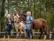 Het is afgelopen met aangepast paardrijden bij 't Ros Beyaert in Epe, door corona