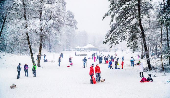 Sneeuwpret bij de De Ugchelse Berg bij Het Leesten op 10 december 2017.