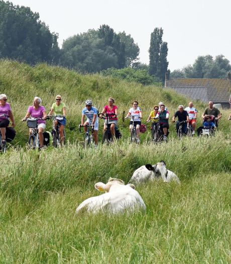 Liefhebbers moeten er snel bij zijn voor Zeeuws-Vlaamse Delta Ride for the Roses