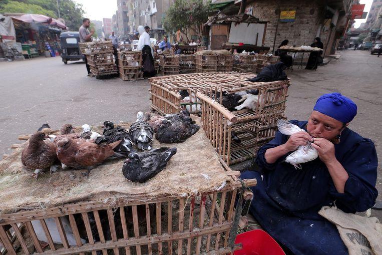 Een pluimveehandelaar voedt een duif met zijn mond. Beeld epa