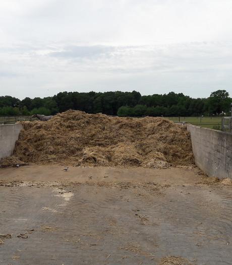 Paardenmest uit Twente en Achterhoek na drogen en persen geschikt als brandstof