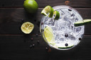 Kijkshop.nl is begonnen met de verkoop van sterke drank, zoals gin.
