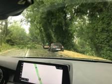Importants dégâts à Ittre à la suite des orages