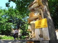 Gratis bijenhotels en bloemenzaad moeten bedreigde insecten redden