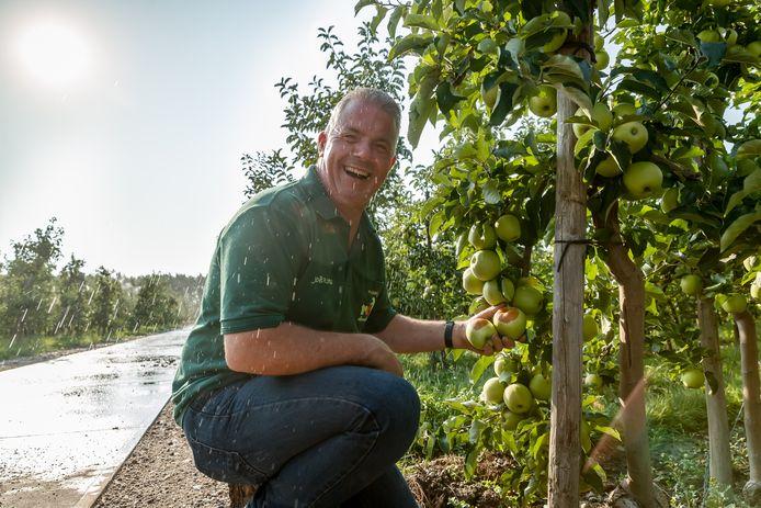 Fruitteler Joël Roks heeft een kluif aan de zomerse dagen. Door de hete zon verbrandt een deel van de appels. Gelukkig weet hij door beregening het overgrote deel koel te houden.