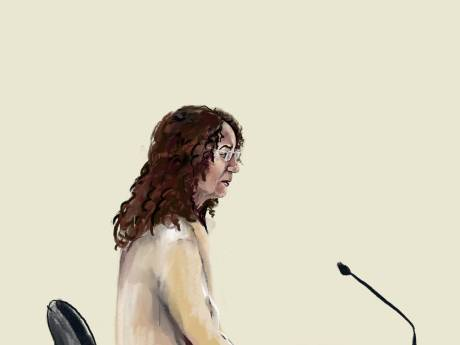 Moeder die zoontje neerstak hoort 6 jaar cel eisen: 'Dat Jamie nog leeft is niet aan de verdachte te danken'