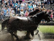 Dagje uit met ridders en paarden bij 25ste Aangespannen Dag Gilze