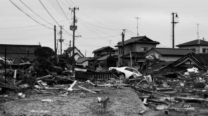 Man van 102 pleegt zelfmoord na ramp Fukushima: exploitant kerncentrale veroordeeld tot schadevergoeding