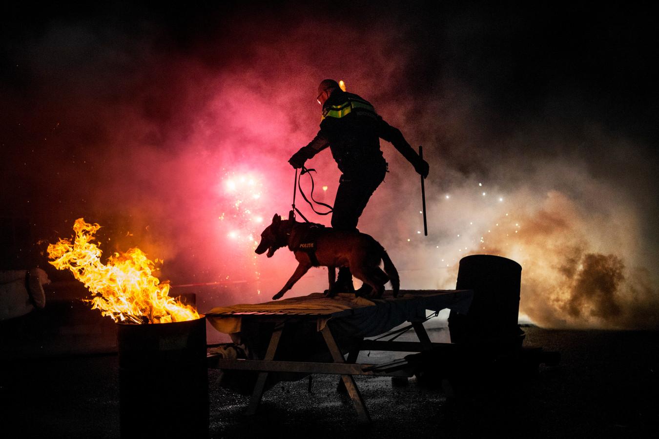 De confrontatie met vuur, rook en knallen moet deze politiehond stressbestendig maken voor het tumult rond oud en nieuw.