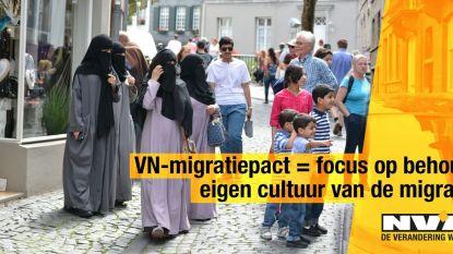 """N-VA haalt """"degoutante"""" campagne tegen migratiepact offline"""