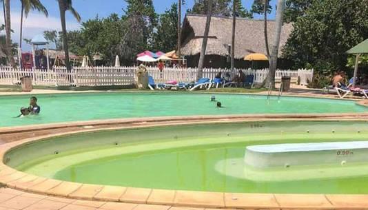 La piscine et son eau verte