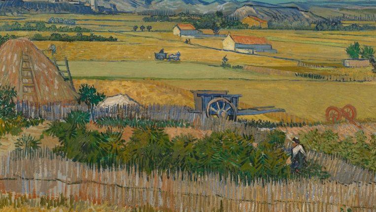 De Oogst van Van Gogh. Het nepdoek zou een voorstudie zijn van dit schilderij. Beeld Van Gogh Museum