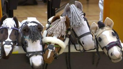 Ruiterschool Beggard organiseert nu ook zomerkampen met stokpaardjes