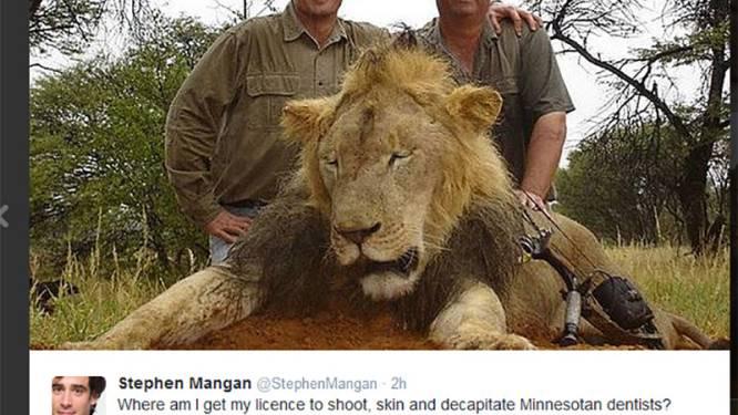 """Tandarts: """"Wist niet dat leeuw Cecil zo populair was"""""""