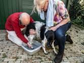 Hond door drugsafval gelopen: 'Hoop dat hij er niks aan over houdt'