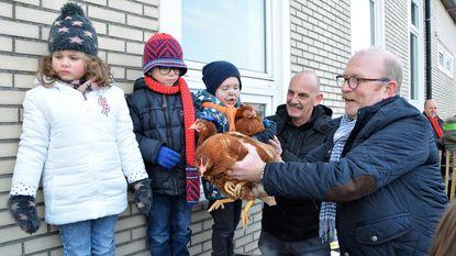 Kippen voor leerlingen Sint-Calasanz