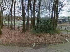 Voetballers Wapenveld sluiten deal met gemeente Heerde over onderhoud sportpark