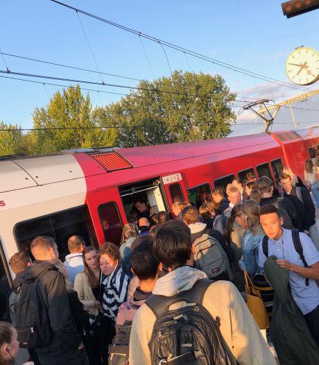 Qbuzz: reiziger moet zich beter verspreiden over trein MerwedeLingelijn
