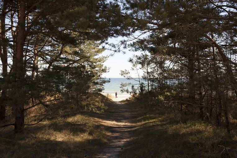 De omgeving van Prora. Beeld Jakob Ganslmeier