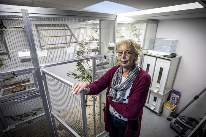 Bij Hannie Lobbes (73) uit Losser werd in de vogelschuur ingebroken. Weet jij nog hoeveel putters werden gestolen?
