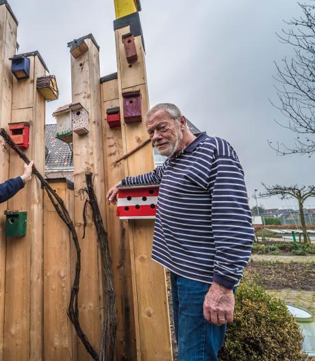 Albert is apetrots op zijn vogelhuisjes: 'Zijn zelfvertrouwen groeit bij de zorgtuinderij'