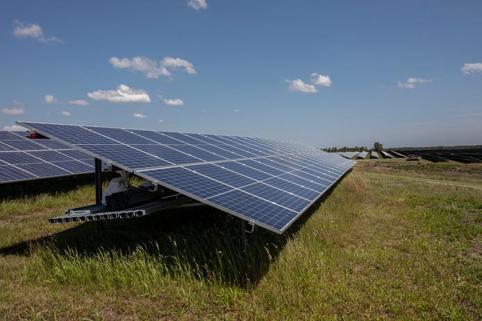 Het grote zonnepark in Budel is vrijdag officieel geopend.