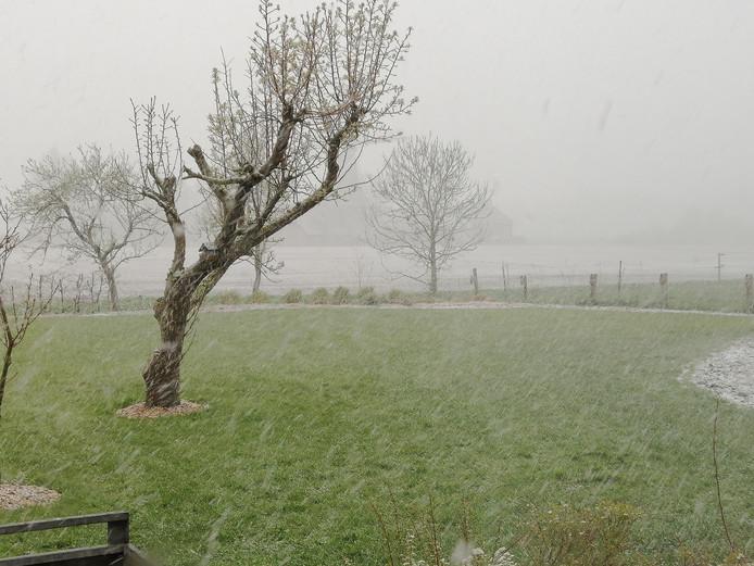 Janna maakte deze foto in Holwerd