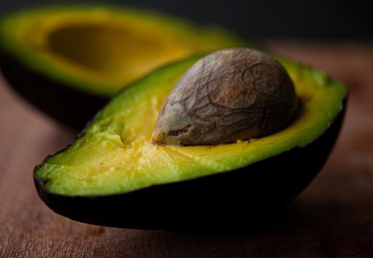 'Ik ben in mijn tuintje een bescheiden avocado-kwekerij begonnen. Het is een heel proces.' Beeld Imageselect