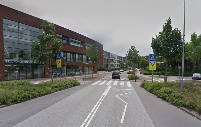 De Brinklaan in Heerde