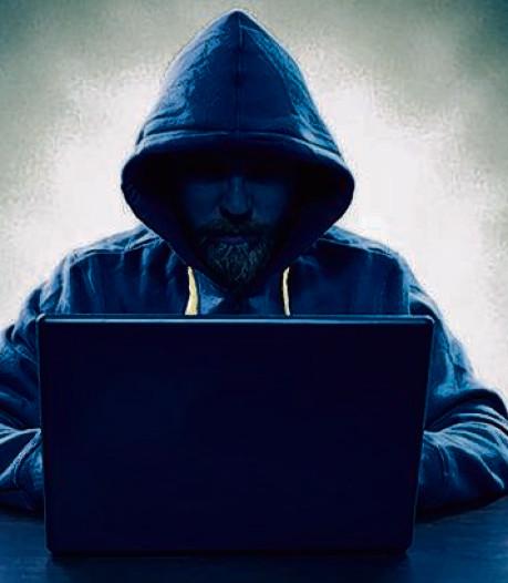 Piek in fraudemeldingen Berg en Dal vooral door één opgepakte verdachte