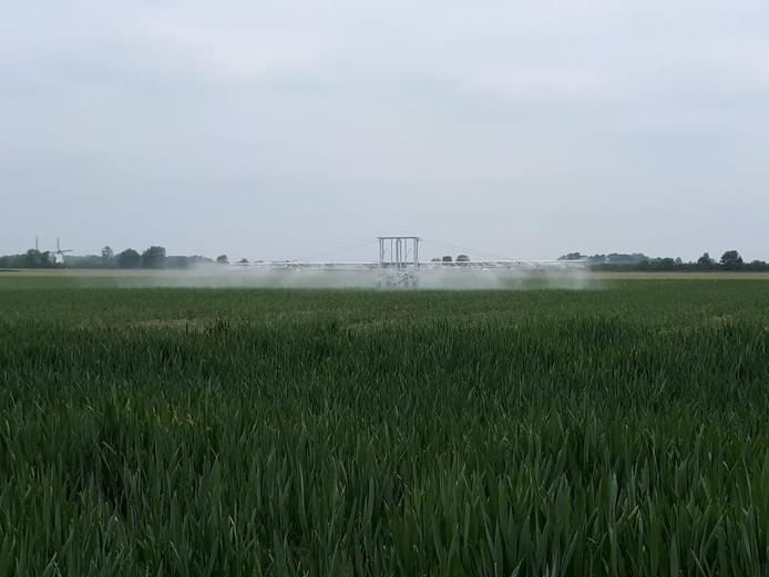 De nieuwe beregeningsinstallatie op proefboerderij Rusthoeve in Colijnsplaat wordt gevoed met regenwater uit een opslagbassin.