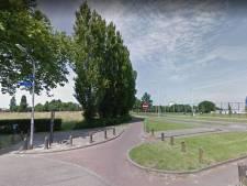 Gemeente naar Raad van State om bomenkap Industrieweg